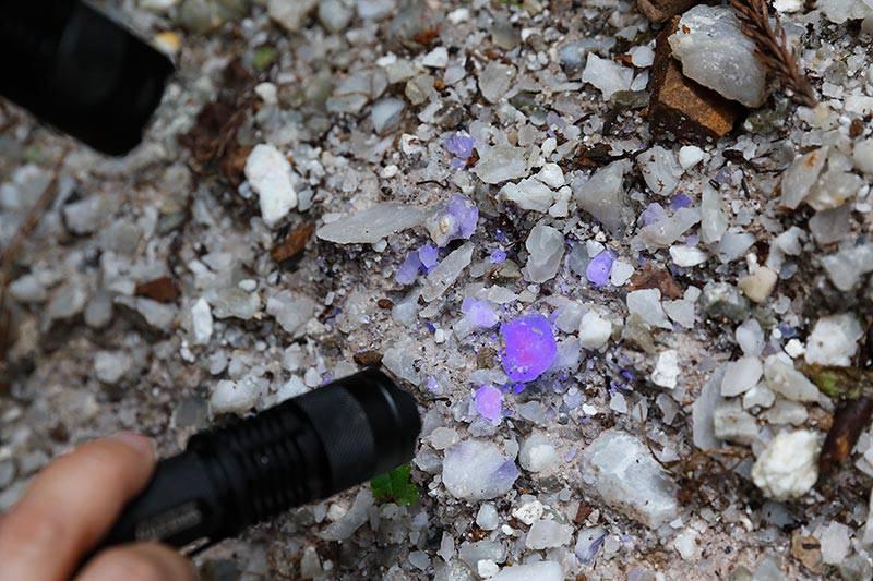 ほたる石鉱山 ミネラルハンティングガイドツアー
