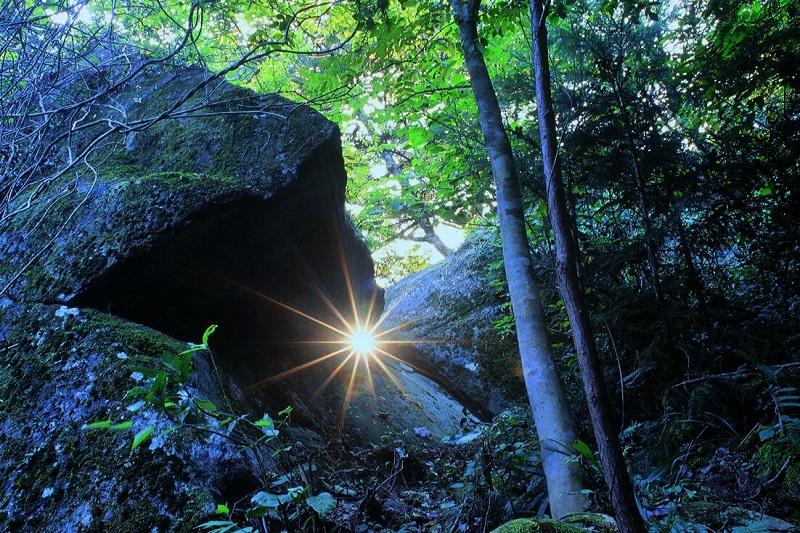 光の体験ツアー+飛騨の郷土料理+ 昔なつかしい路地裏探検