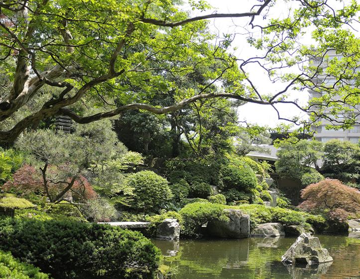 「山水閣」特別室から広がる庭園