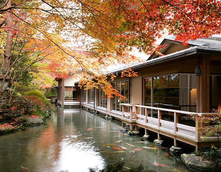 色鮮やかな景色が広がる秋の庭園