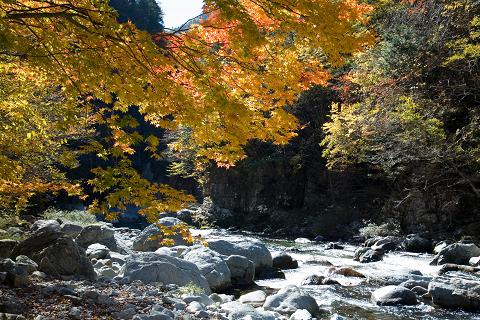 【馬瀬】日本で最も美しい村で里山ウォーキング♪